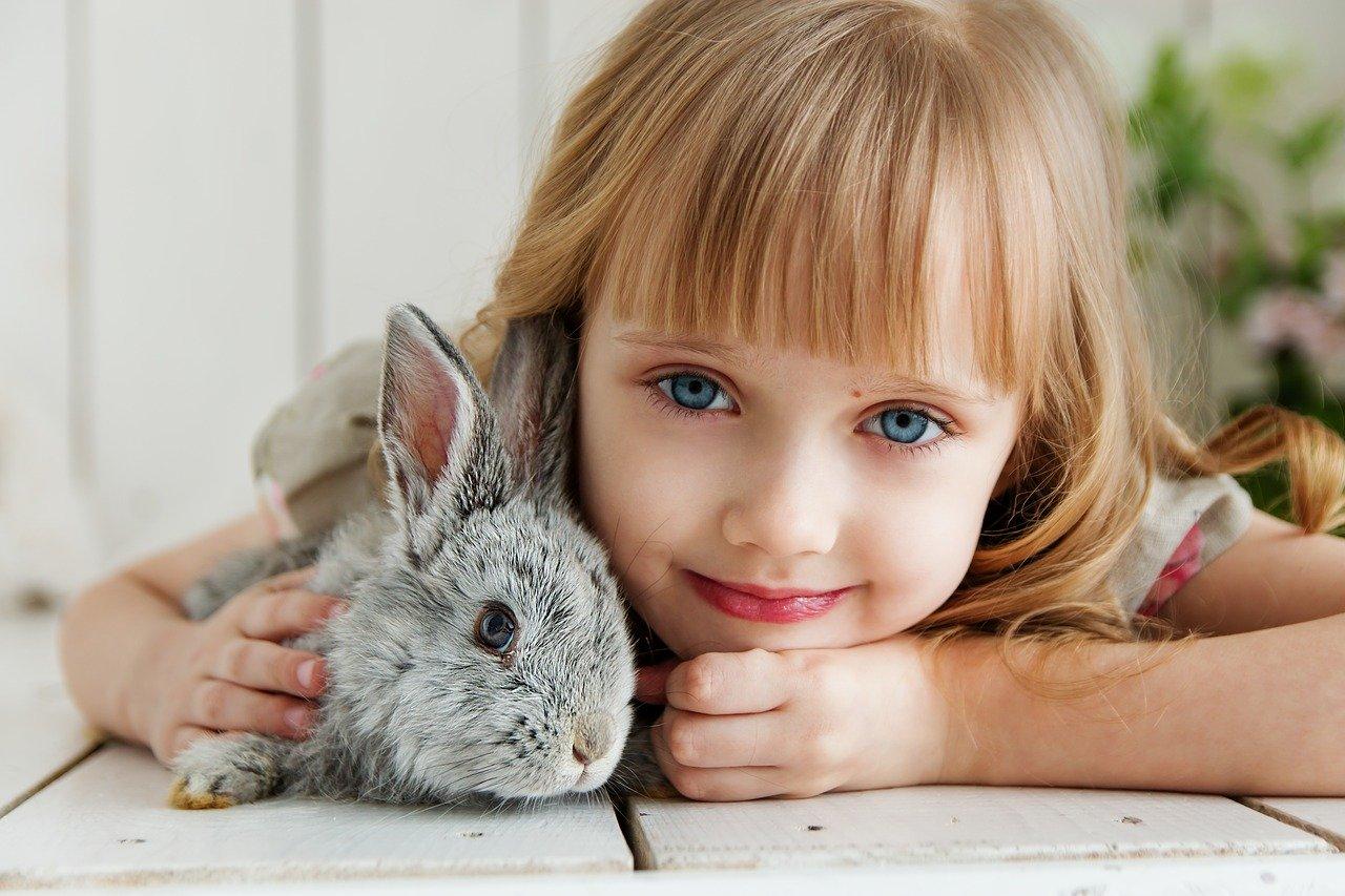 Дете е прегърнало малко зайче